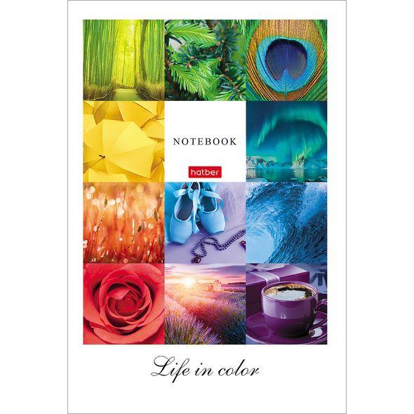 """Бизнес-блокнот А5 96л Хатбер тв. обл. лам. """"Жизнь в цвете"""""""