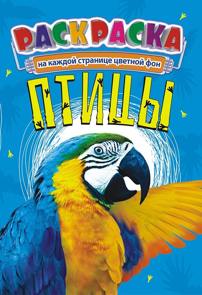"""Раскраска А5+ тв. обл. """"Птицы"""""""