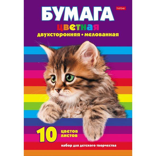 "Цвет.бумага А4 Хатбер 10л 10цв мелов.2хст. папка ""Котенок"""