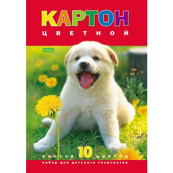 "Цвет.картон А4 Хатбер 10л 10цв ""Белый щенок"""
