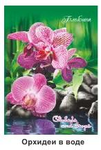 """Блокнот А6 40л СарПК """"Орхидеи в воде"""""""