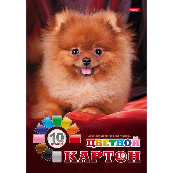 """Цвет.картон А4 Хатбер 10л 10цв в папке """"Пушистый щенок"""""""