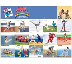 "Плакат А2  ""Виды спорта"""